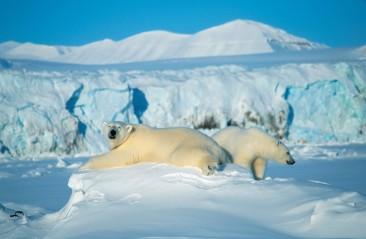 Till Svalbard med Solresor